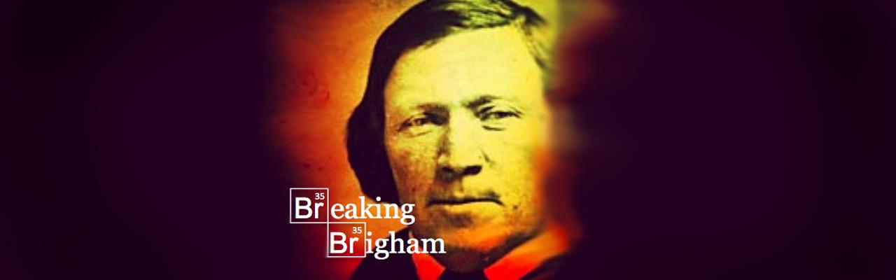 Breaking Brigham: Methamphetamine and Mormon Tea—The Appendix