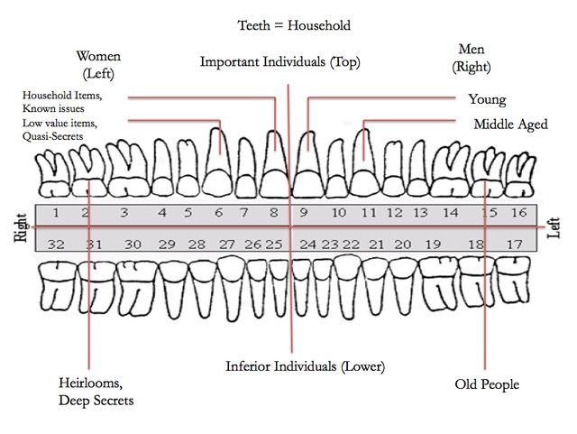 diagram for tooth loss guidelines